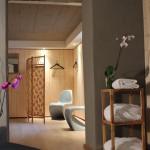 villa elyane colmar sauna partie vestiaire